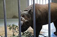Zoorashia201503_034